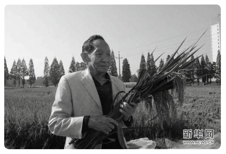 袁隆平院士逝世 享年91岁